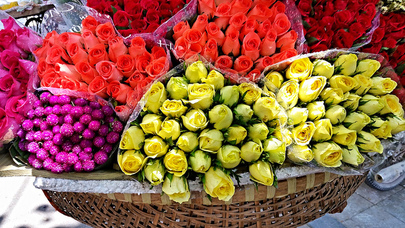 roses for sale in Hanoi